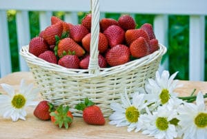 White basket of strawberries on table with daisies